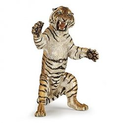 Standing Tiger